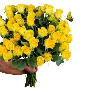 Artefiori: consegna fiori a Roma in un batter d'occhio