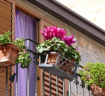 Spedizione fiori a Roma: un tocco di Bellezza firmato Artefiori
