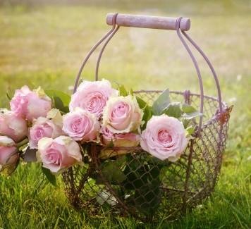 Spedire fiori a Roma: perché le rose si regalano dispari?