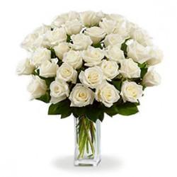 Mazzo di 20 rose  bianche con bacche verdi e foglie di verde