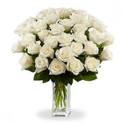 20 white roses with green berries and leaves of green