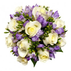 12 white Roses with freesias scented