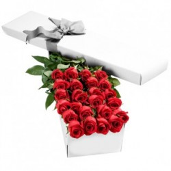7 red Roses in a box, in the unforgettable excitement!