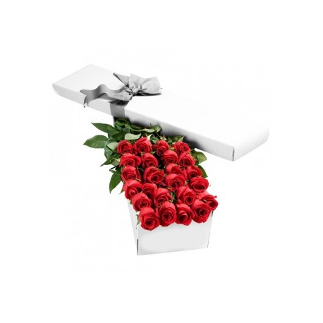 6 red Roses in gift box