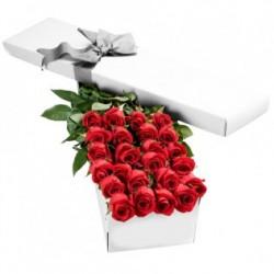 18 Roses rouges dans une boîte, dans les moments de bonheur inoubliables!