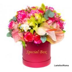 20 Trandafiri rosii intr-o cutie, în entuziasm de neuitat!