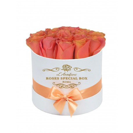 Box special roses