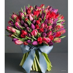 Gran Luxury Tulipani mix