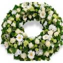 Crown medium-large white roses