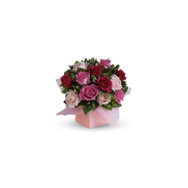 Box rose