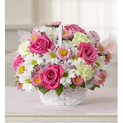 Compositions in basket with pink roses and daisies