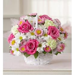 Composizioni in cesto  con rose rosa e margherite