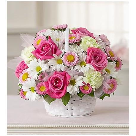 Connu fiori rosa in cesto EG11