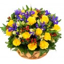 Combination of 12 yellow roses red berries and iris blue