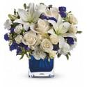 Composizione in vetro con una dozzina di rose bianche e fiori blu