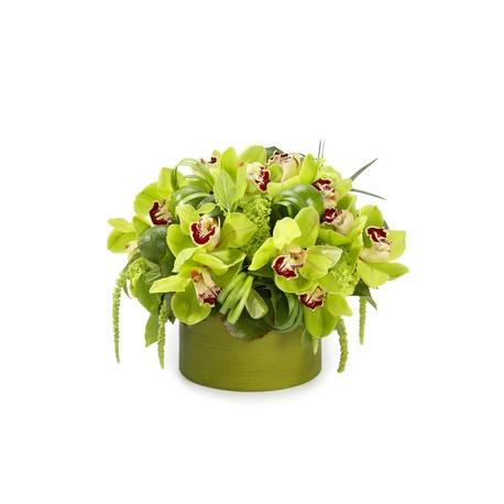 Composizioni di orchidee in vasi di vetro for Composizioni natalizie in vasi di vetro