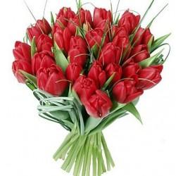 Gran buouquet di tulipani rossi