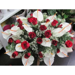 cuscino grandezza media con anthurium rose rosse in verde complementare