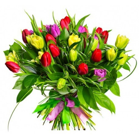 Give the gift of Tulips , the tulips for your declaration of love.