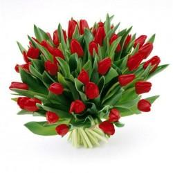 Un gran Ramo de tulipanes rojos
