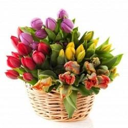 Кошик різнокольорових тюльпанів