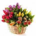 Cesto di tulipani colorati