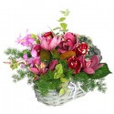 Basket with orchids and red roses