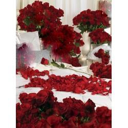 Un millar de rosas rojas, el más apasionado y romántico regalo...
