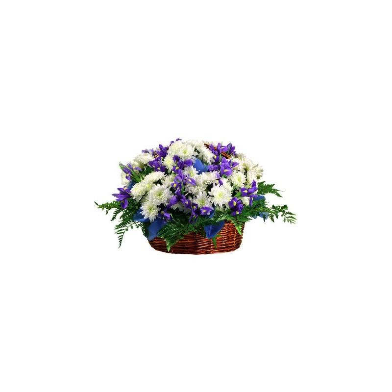 Iris blue, and the daisies, Dutch