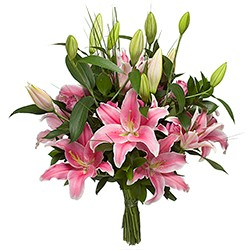 Bouquet lilies pink green leaves