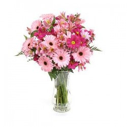 Bundle of gerbera pink,fuchsia,alstroemerie pink flowers and complementary green leaves