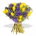Bouquet of yellow tulips, and hyacinths blue