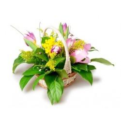 Mimosa9 Hermosa cesta con tulipanes de color rosa y mimosa