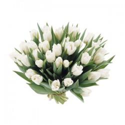 Букет з білих тюльпанів