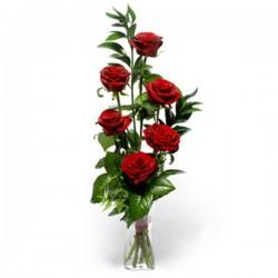 6 червоних Троянд в упаковці