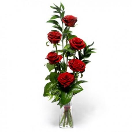 6 Rose rosse in confezione