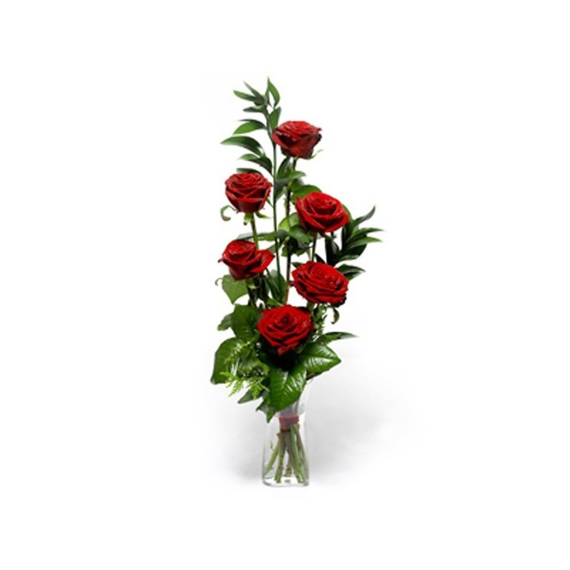 6 red Roses in box