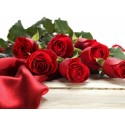 11 red roses in box