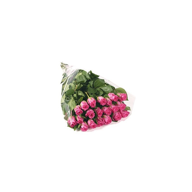 11 pink Roses