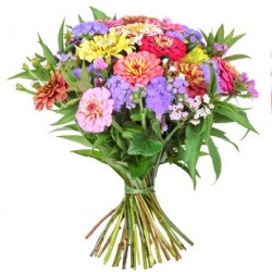 Combination of seasonal flowers by colors mixed