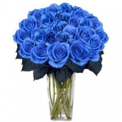 Blue eyes ,a bouquet of 25 blue roses.