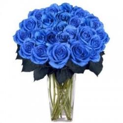 Ojos azules ,un ramo de flores, de 25 de rosas azules.