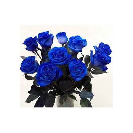 12 Rosas Azules Lartefiori Fiori On Line Roma