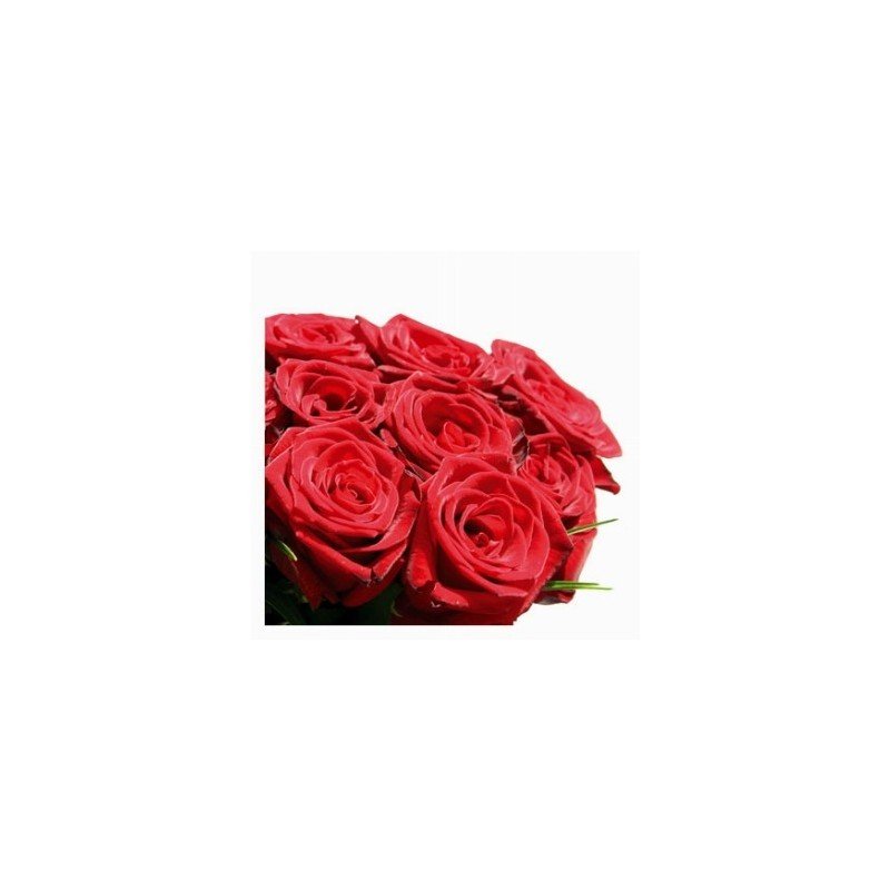 15 red roses in box