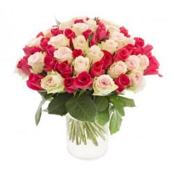 Dos docenas de crema de rosas y rosa fucsia