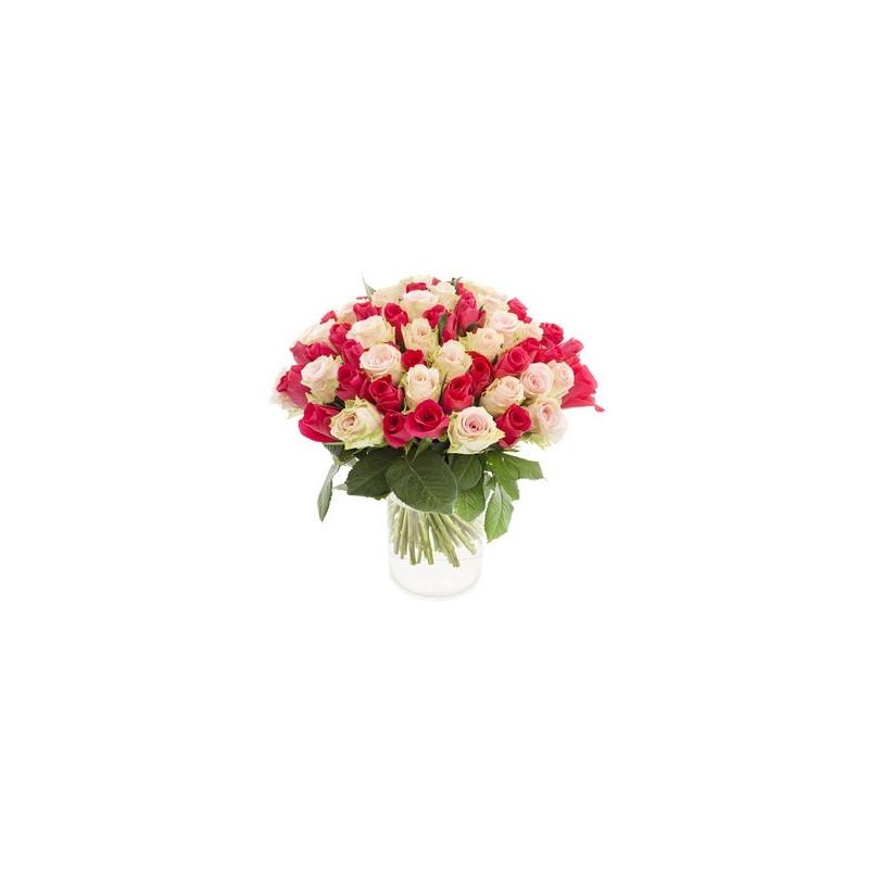 Three dozens of cream roses and pink fuchsia