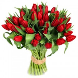 San Valentino11 -Bouquet of red Tulips