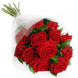12rose rosse in confezione