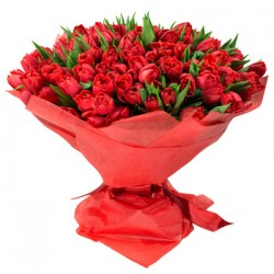 Bouquet of 100 red tulips