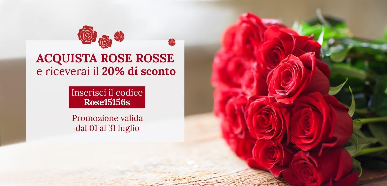 banner-rose-rosse